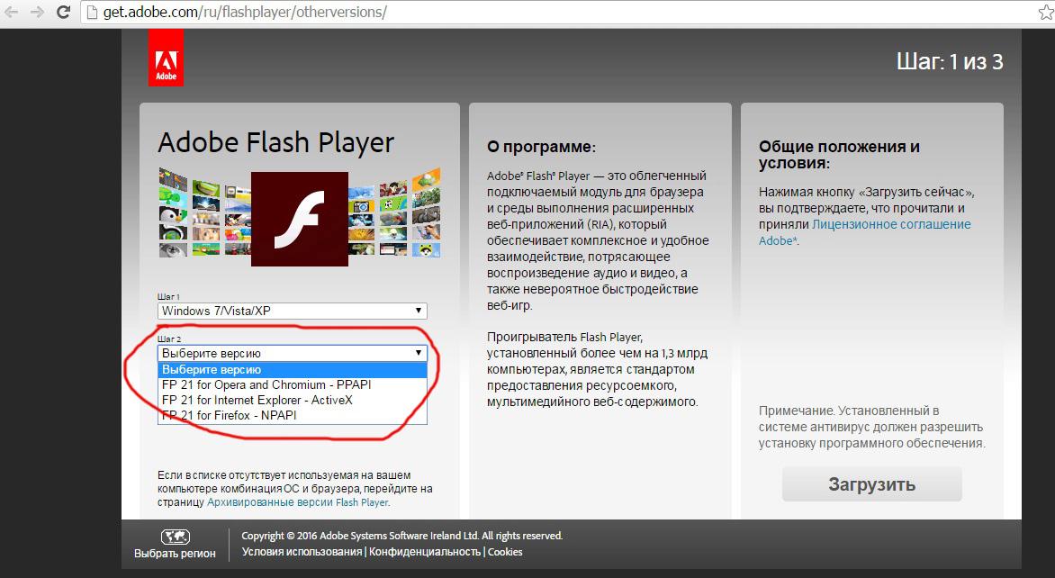 как установить флеш плеер для браузера тор попасть на гидру